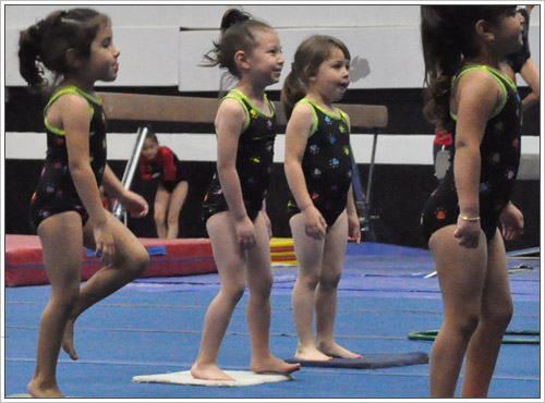 Toddler Gymnastics Classes